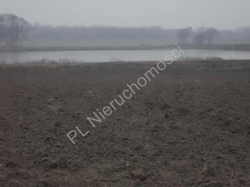 Działka rolna na sprzedaż Ciemno-Gnojna  20700m2 Foto 1