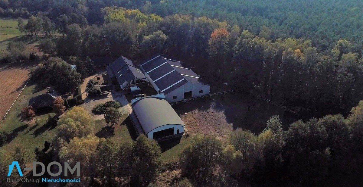 Lokal użytkowy na sprzedaż Stara Kaźmierka  1700m2 Foto 2
