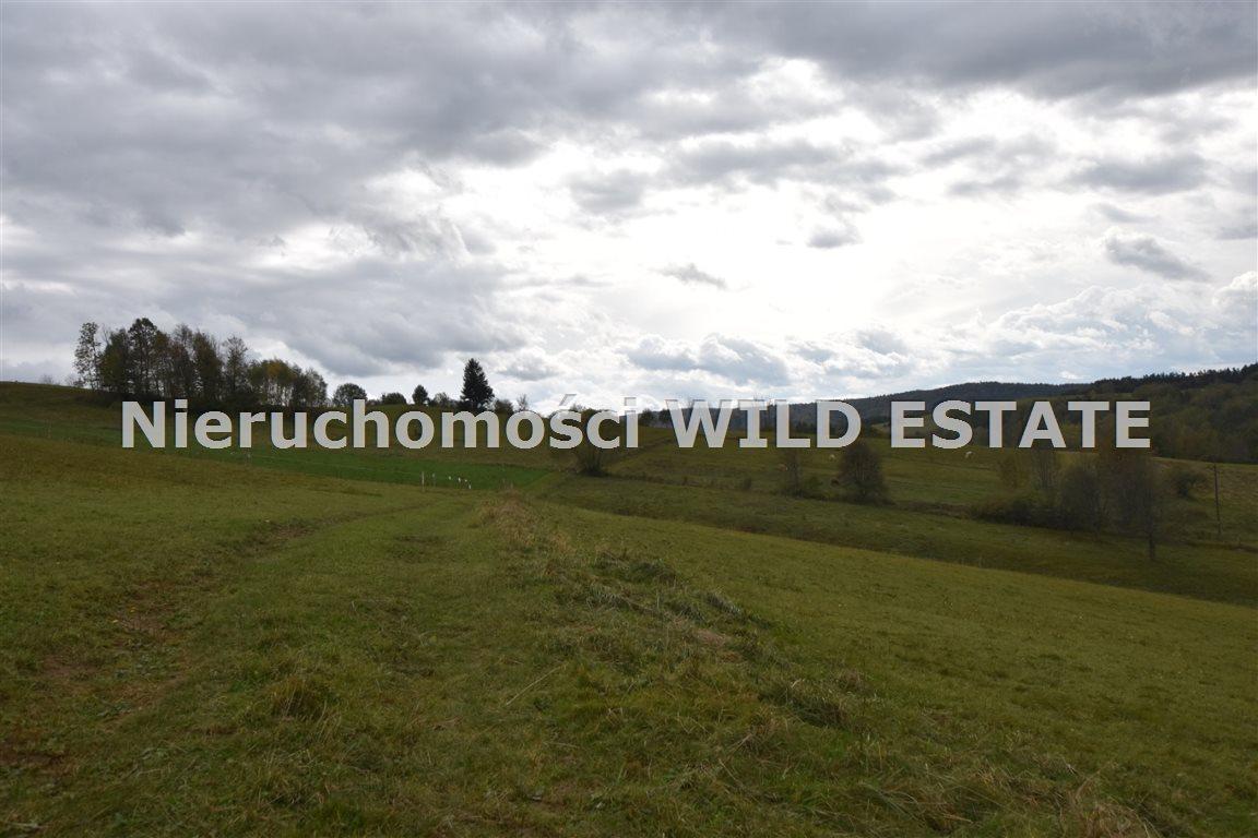 Działka rolna na sprzedaż Wola Matiaszowa  11306m2 Foto 3