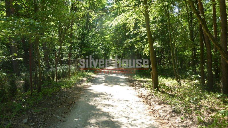 Działka leśna z prawem budowy na sprzedaż Siestrzeń  4000m2 Foto 2