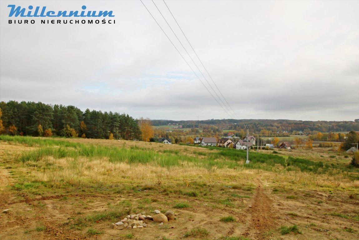 Działka rolna na sprzedaż Nowy Dwór Wejherowski  18766m2 Foto 12
