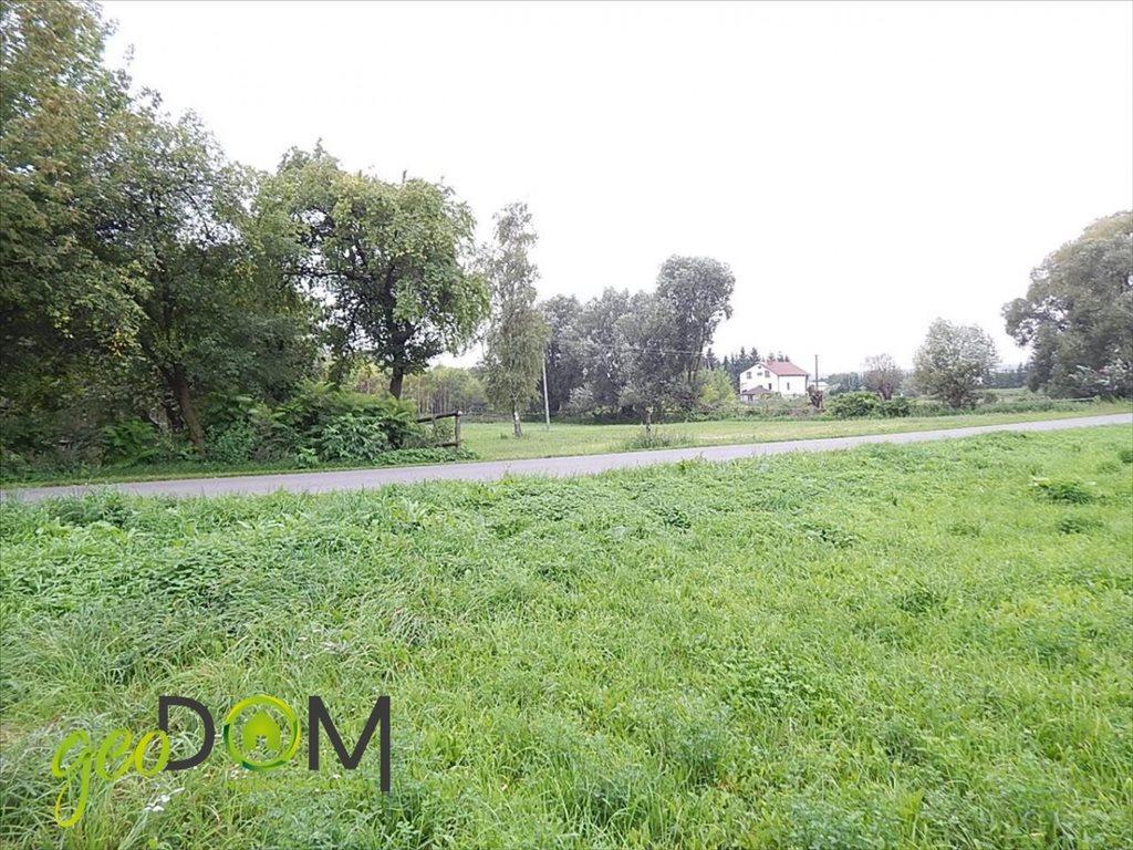 Działka rolna na sprzedaż Horodyszcze-Kolonia  11293m2 Foto 6
