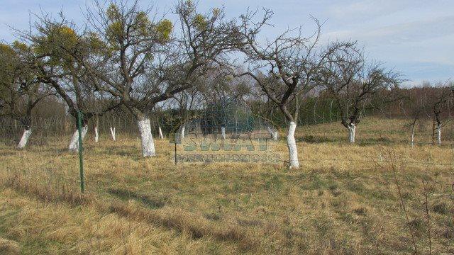 Działka siedliskowa na sprzedaż Breń  3400m2 Foto 2