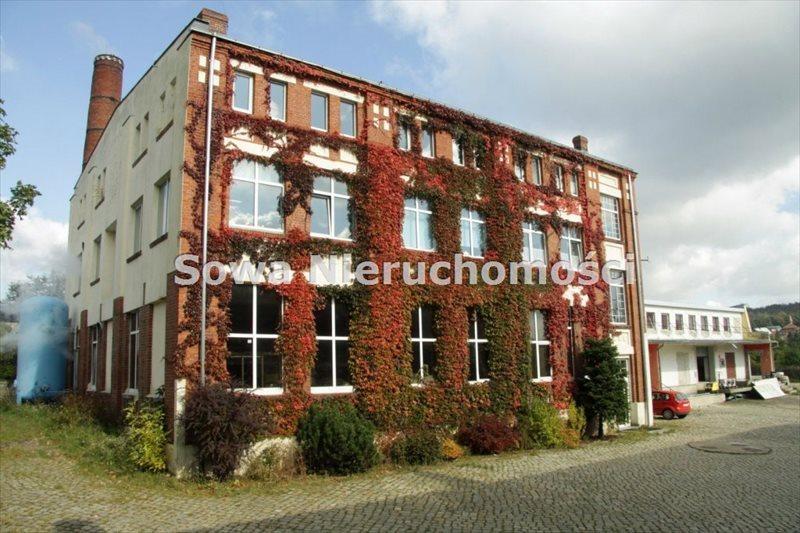 Lokal użytkowy na sprzedaż Wałbrzych, Biały Kamień  1170m2 Foto 3