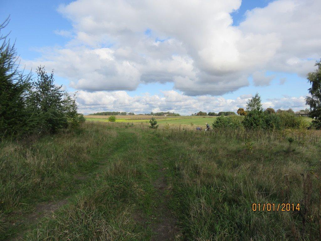 Działka siedliskowa na sprzedaż Dąbrowa  11000m2 Foto 3