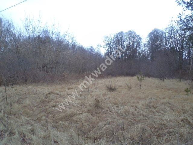 Działka leśna na sprzedaż Raducz  8600m2 Foto 8