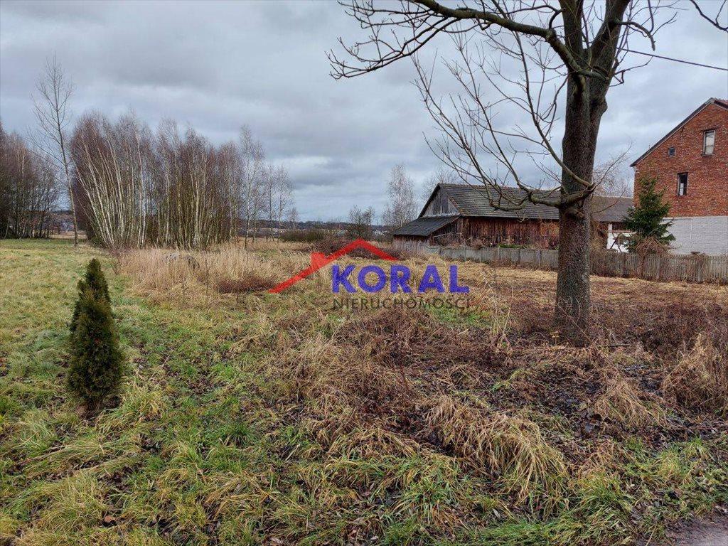Działka budowlana na sprzedaż Skrzypiów, Skrzypiów - Pińczów  9700m2 Foto 3