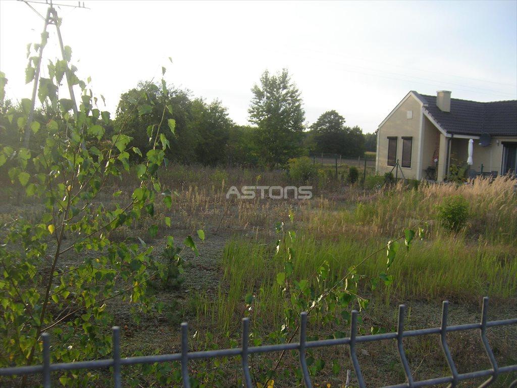 Działka budowlana na sprzedaż Wierzyce, Wierzyce  1244m2 Foto 8