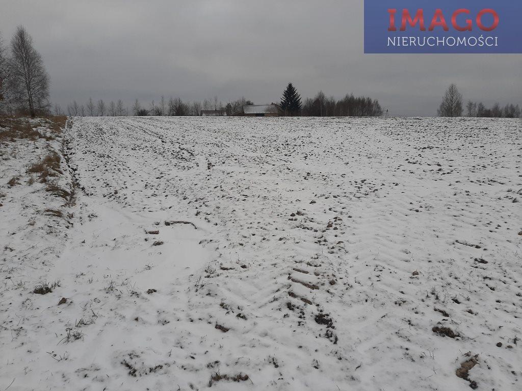Działka siedliskowa na sprzedaż Wola Rafałowska  4100m2 Foto 1