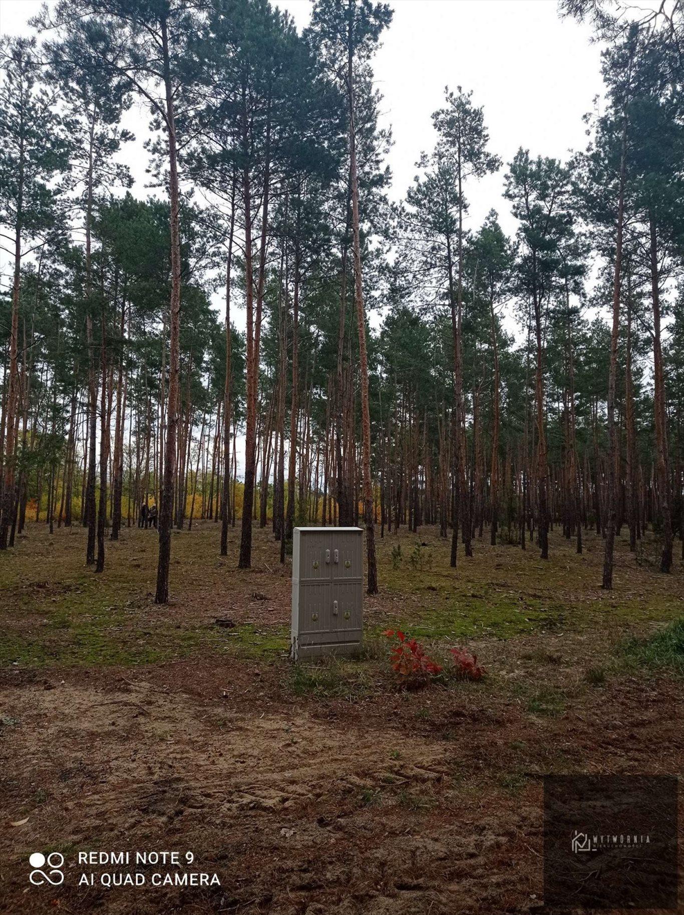 Działka leśna na sprzedaż Leśnik  1980m2 Foto 4