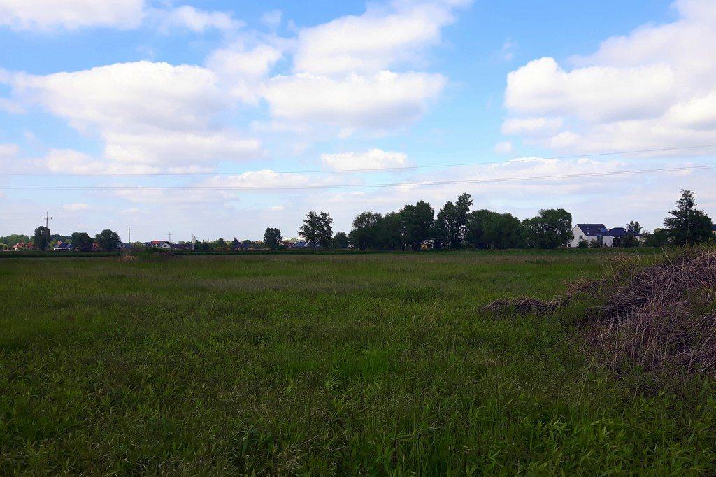 Działka siedliskowa na sprzedaż Iwiny  1750m2 Foto 2