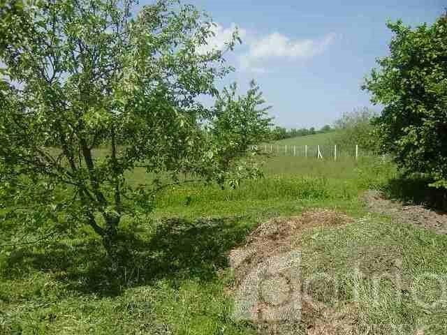 Działka rolna na sprzedaż Siadło Dolne  3000m2 Foto 1