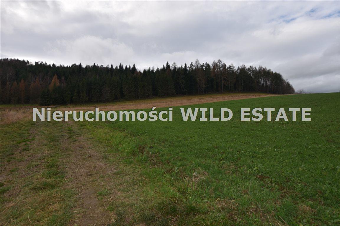 Działka rolna na sprzedaż Solina, Berezka  9520m2 Foto 3