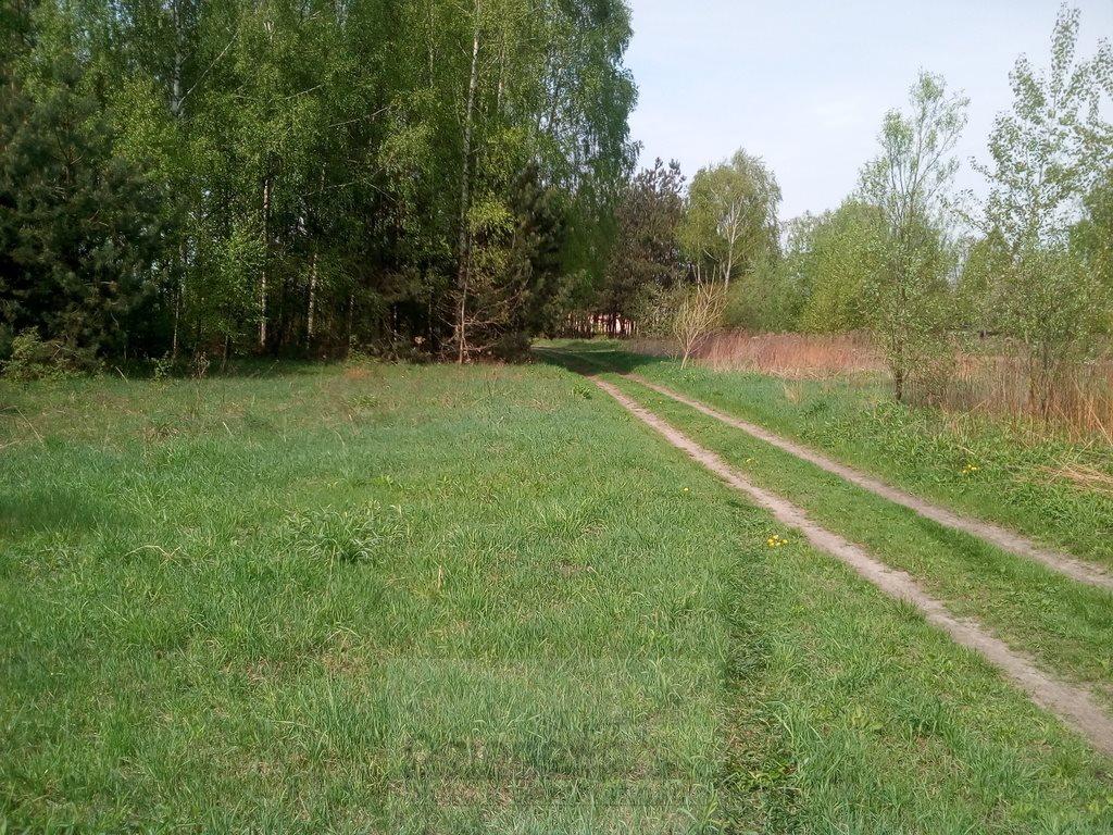 Działka rolna na sprzedaż Nasielsk  4573m2 Foto 3