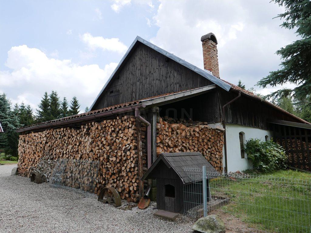 Dom na sprzedaż Stękiny  700m2 Foto 5