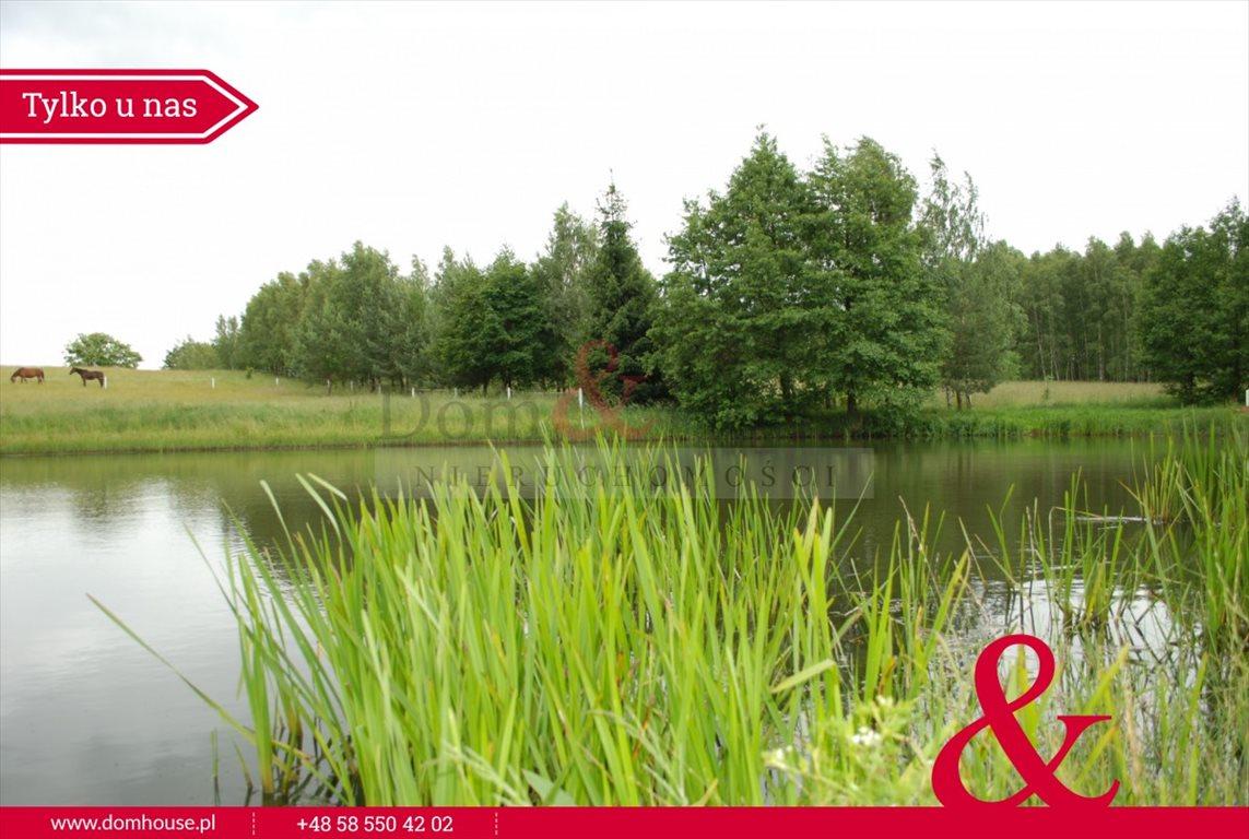 Lokal użytkowy na sprzedaż Mirowo Duże  420m2 Foto 10