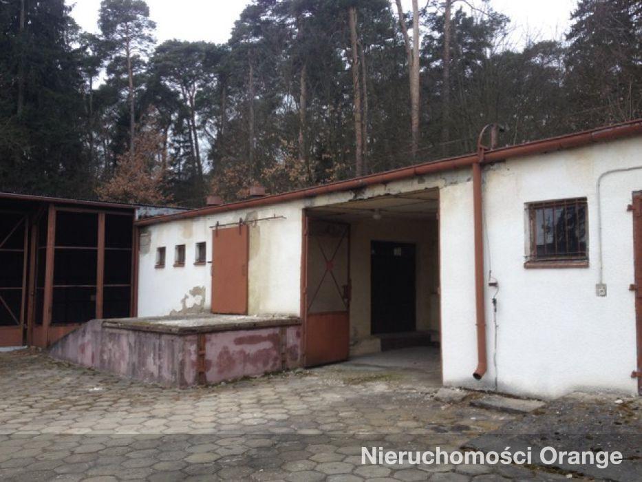 Lokal użytkowy na sprzedaż Szubin-Wieś  1196m2 Foto 2