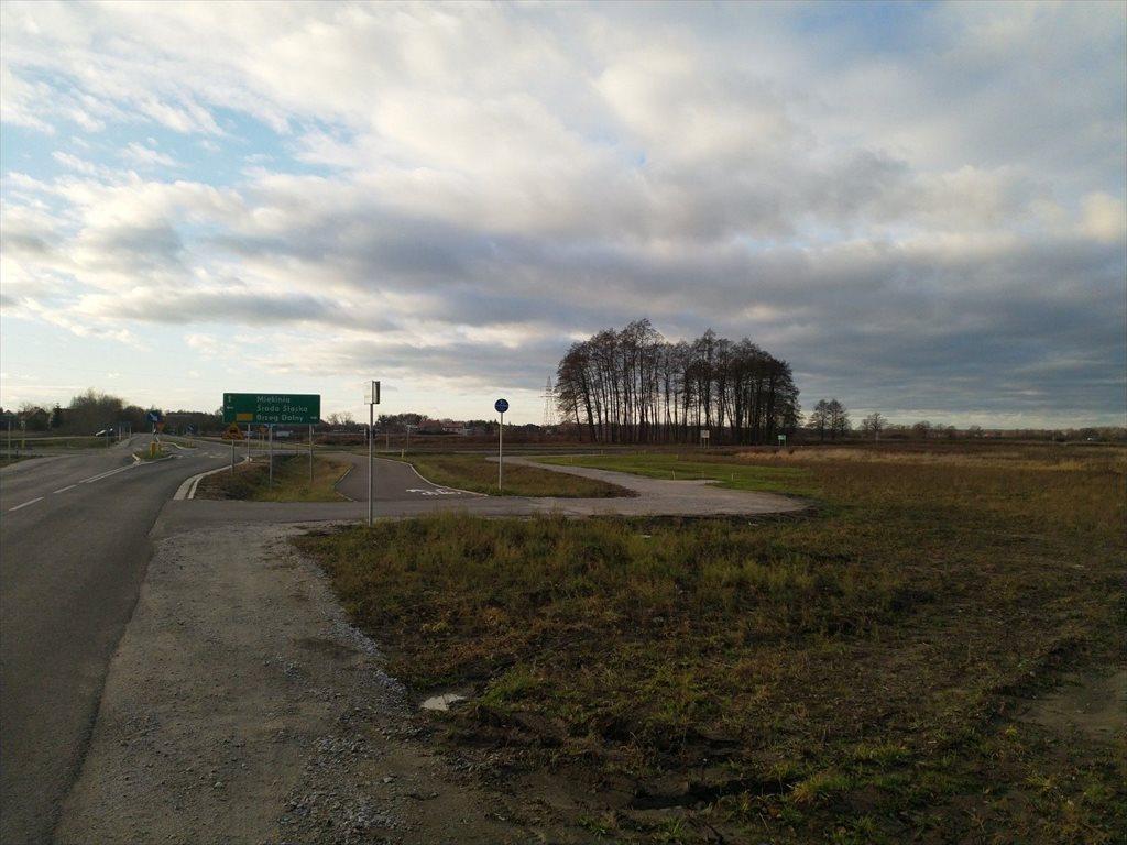 Działka budowlana na sprzedaż Miękinia, Mrozowska  1452m2 Foto 2