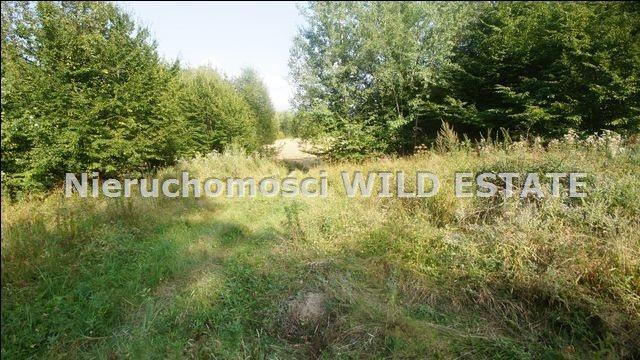 Działka rolna na sprzedaż Lesko, Huzele  88812m2 Foto 9