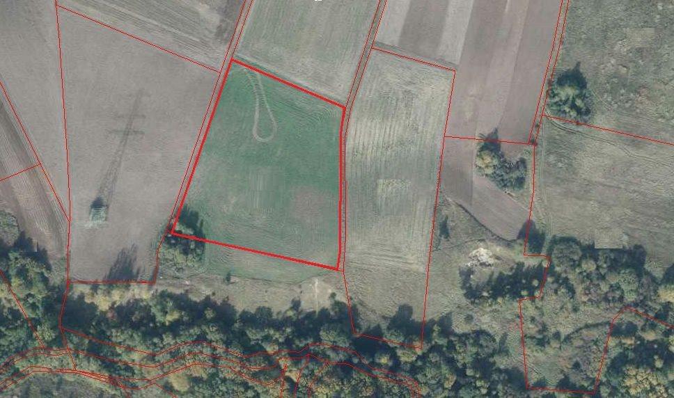 Działka leśna na sprzedaż Szczecin, Skolwin  14382m2 Foto 1