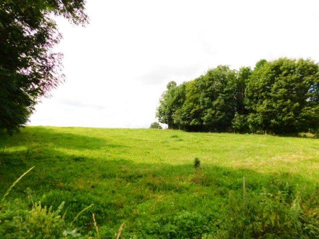 Działka rolna na sprzedaż Szczepanki  92900m2 Foto 9