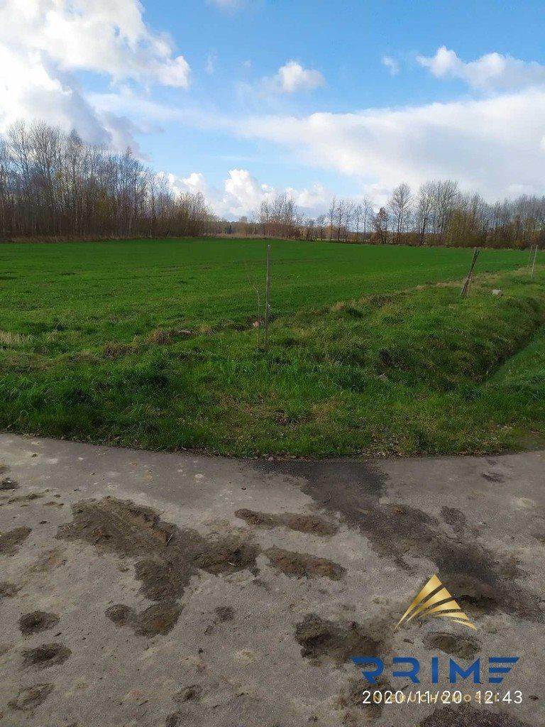 Działka leśna z prawem budowy na sprzedaż Wilkowice  14067m2 Foto 4