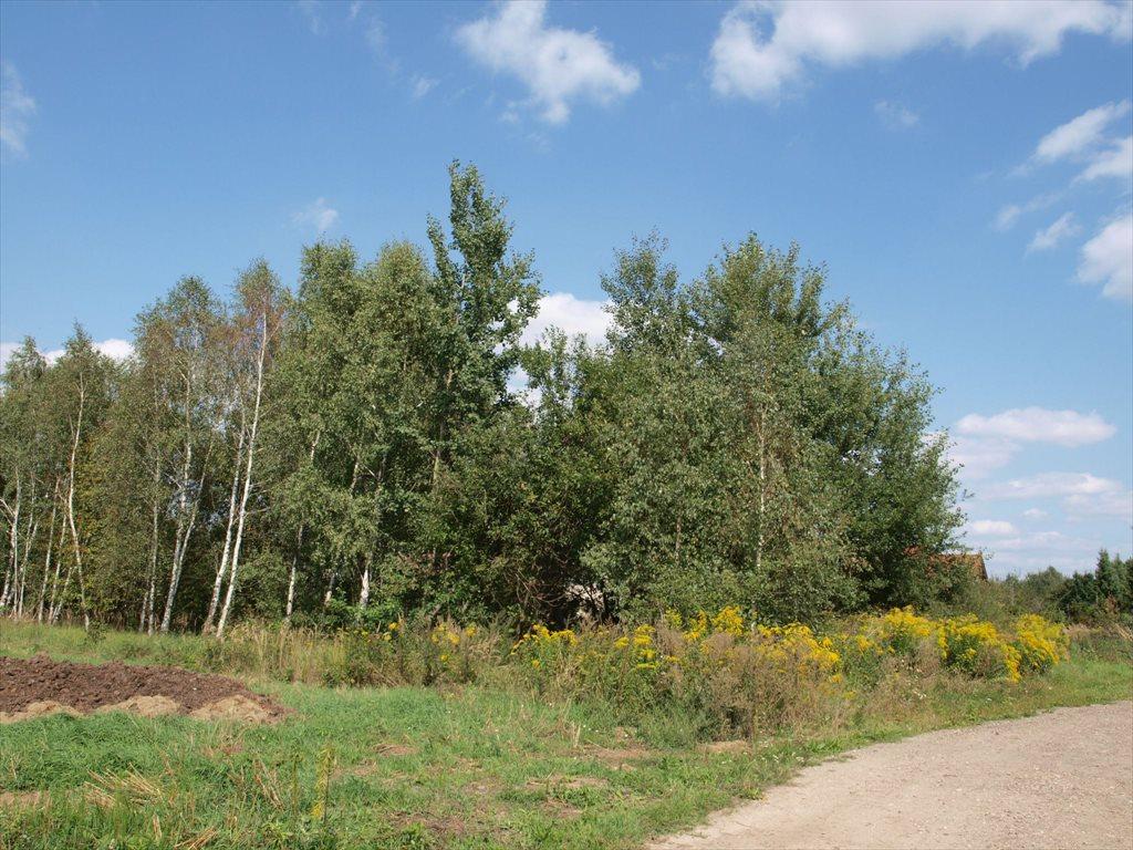 Działka budowlana na sprzedaż Wierzchowisko  1054m2 Foto 5