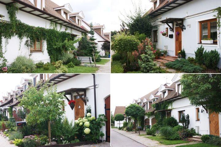 Dom na sprzedaż Nowa Iwiczna, Krzywa Iwiczna, Krążek  53m2 Foto 11