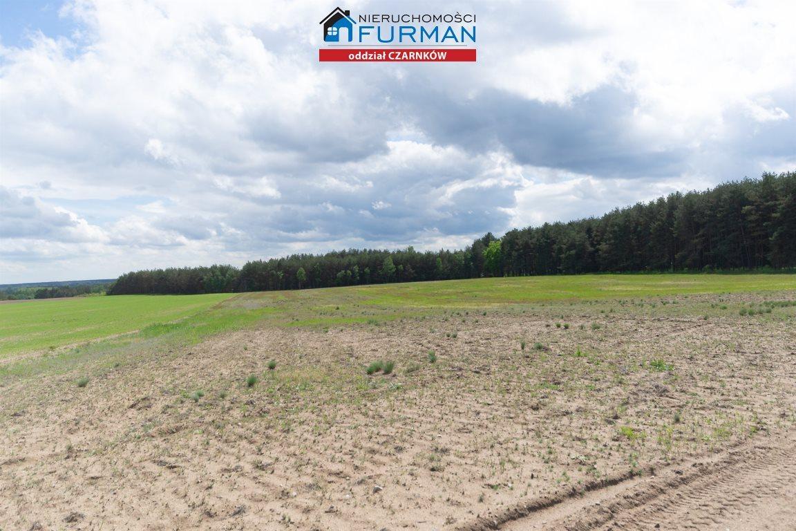 Działka rolna na sprzedaż Nowe Dwory  33639m2 Foto 4