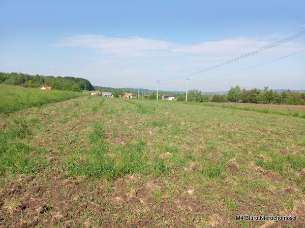 Działka rolna na sprzedaż Żeglce  15500m2 Foto 6