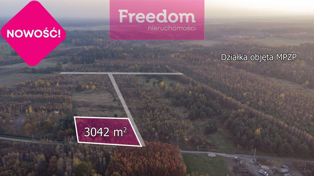 Działka budowlana na sprzedaż Wola Mokrzeska  3043m2 Foto 3