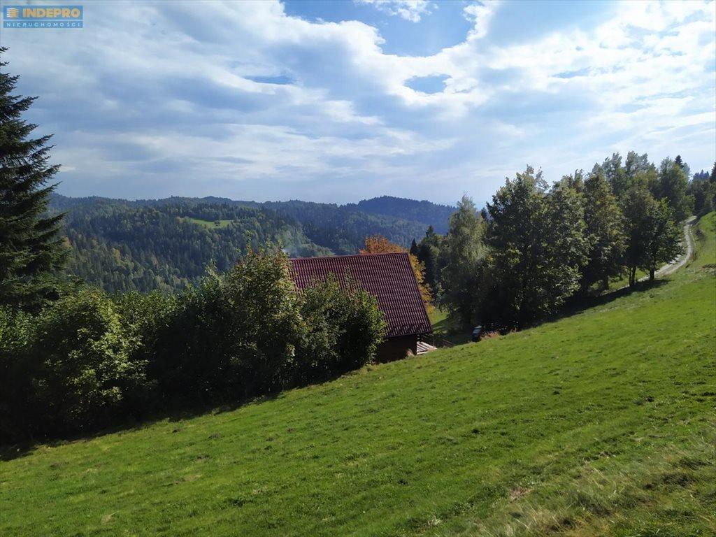 Dom na sprzedaż Zarębek Wyżni, Łopuszna, Zarębek Wyżni - Szlak na Turbacz  200m2 Foto 4