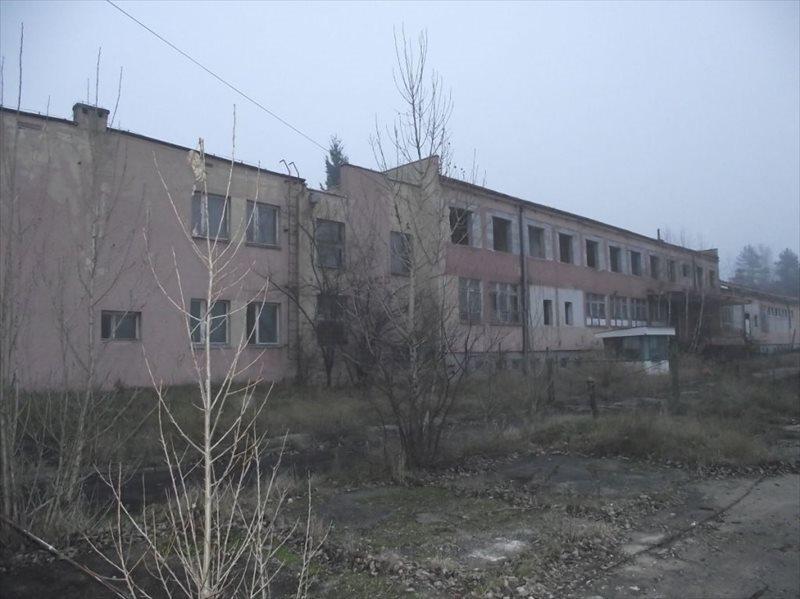 Lokal użytkowy na sprzedaż Nowogród Bobrzański  600m2 Foto 4