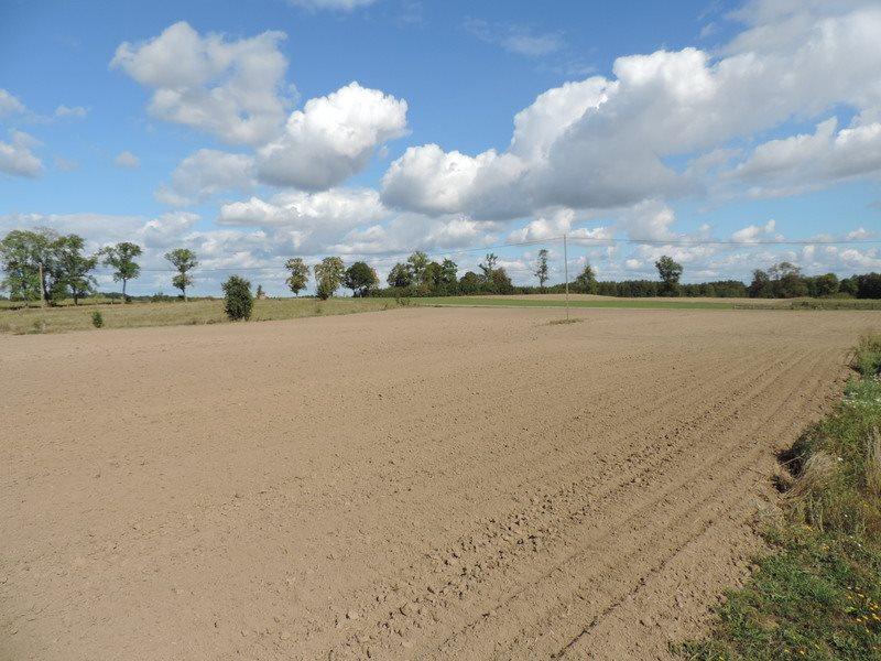 Działka gospodarstwo rolne na sprzedaż Jerzwałd, Jerzwałd 4A  39894m2 Foto 15