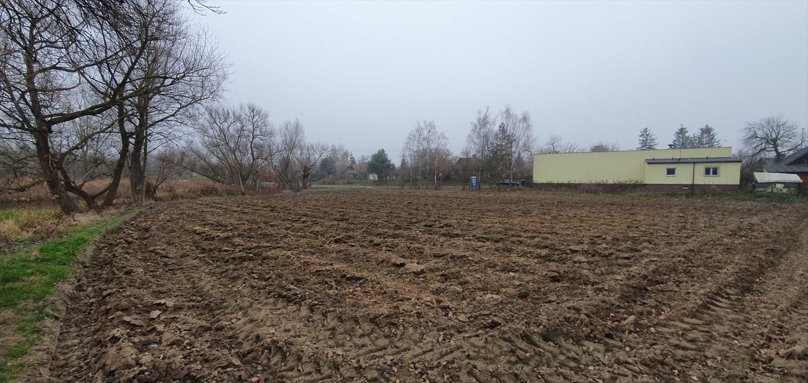 Działka budowlana na sprzedaż Konstacin-Jeziorna, Cieciszew  2900m2 Foto 3