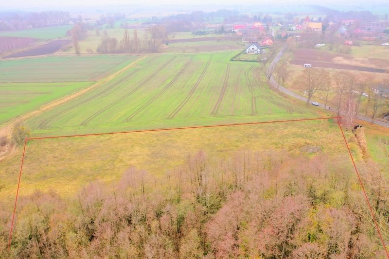 Działka leśna na sprzedaż Pyrzyce, WOJCIECHA BARTOSZA GŁOWACKIEGO  15700m2 Foto 2
