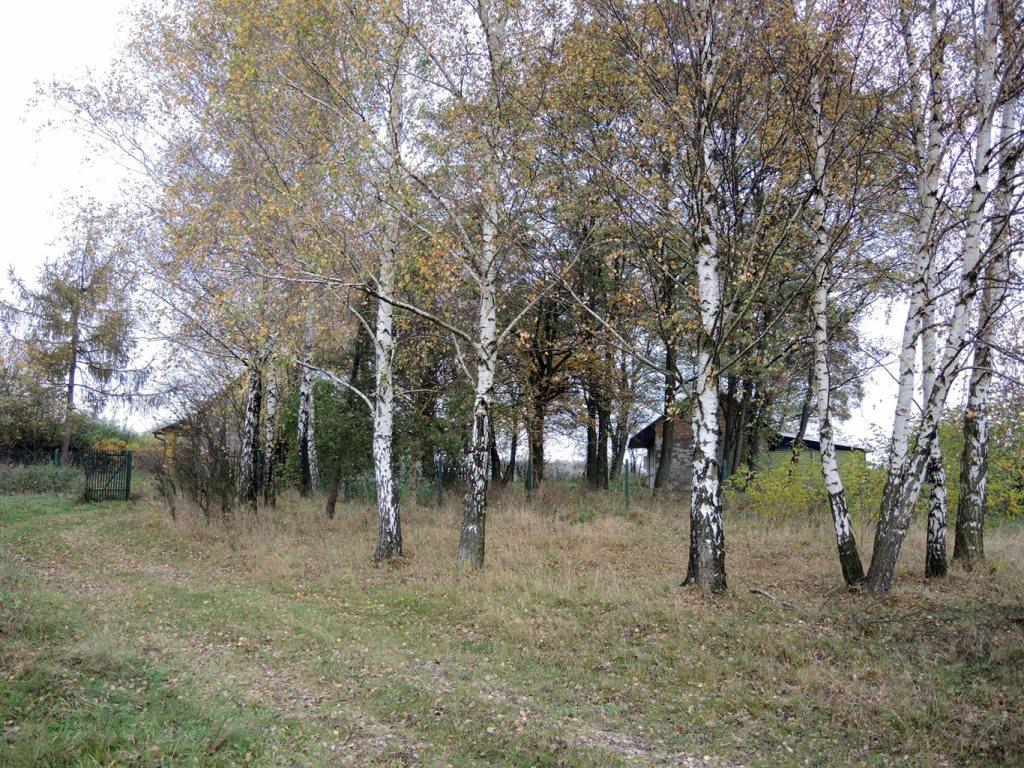 Działka rolna na sprzedaż Podlindowo  38000m2 Foto 6