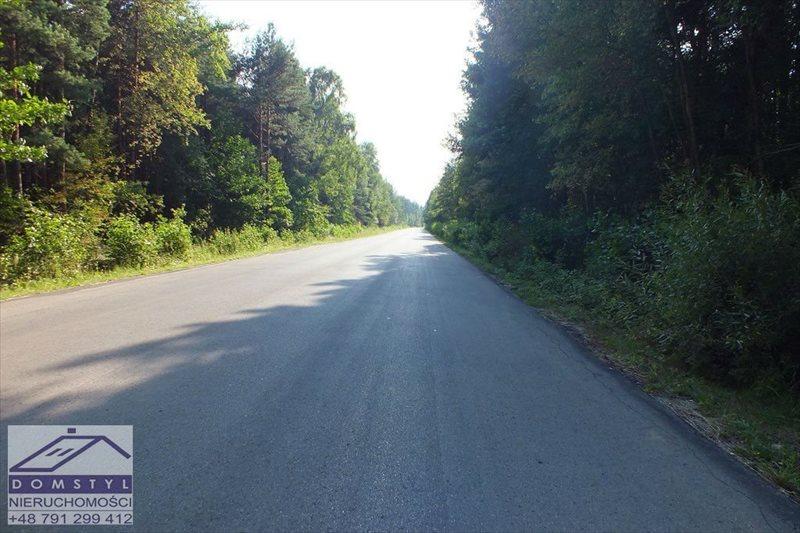 Działka leśna na sprzedaż Zawiercie, Blanowice, zawierciański  64912m2 Foto 2
