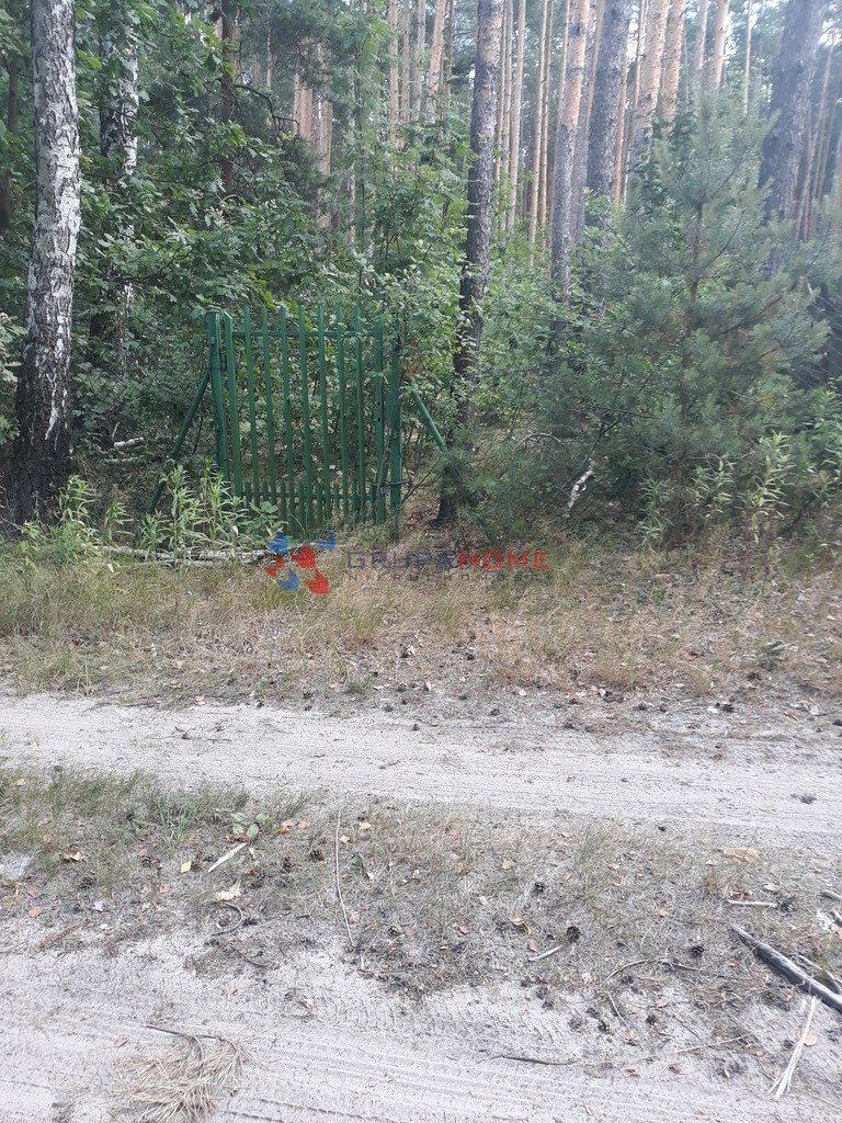 Działka leśna z prawem budowy na sprzedaż Jeziórko  1070m2 Foto 1