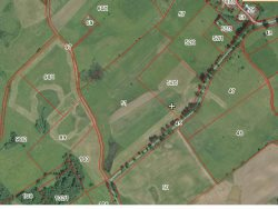 Działka rolna na sprzedaż Rogale  58200m2 Foto 6