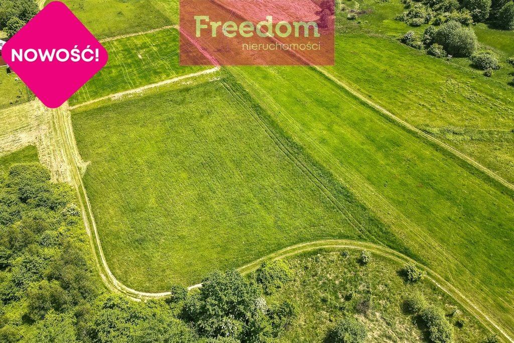 Działka rolna na sprzedaż Nowy Borek  4500m2 Foto 3