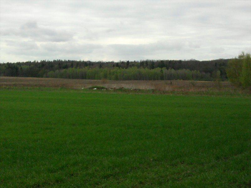Działka rolna na sprzedaż Rościsławice, Rościsławice  10200m2 Foto 4