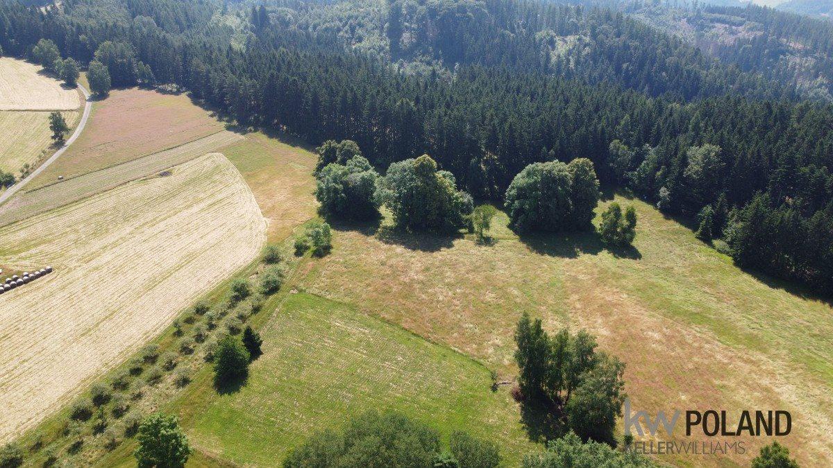 Działka rolna na sprzedaż Kudowa-Zdrój, Pstrążna  4386m2 Foto 3