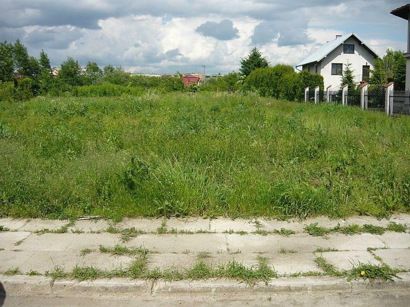 Działka budowlana na sprzedaż Tarnów, Strusina, Główna  5000m2 Foto 3