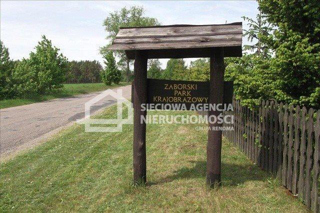 Działka leśna na sprzedaż Czarniż  44100m2 Foto 10
