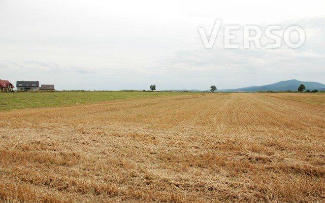 Działka siedliskowa na sprzedaż Michałowice, Mirosławicka  3000m2 Foto 6