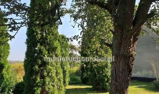 Dom na sprzedaż Dolsk, ul. gostyńskie przedmieście  209m2 Foto 3