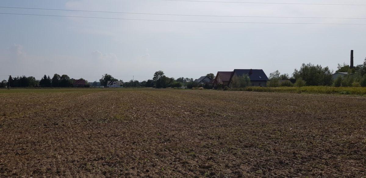 Działka rolna na sprzedaż Czernica  9534m2 Foto 4