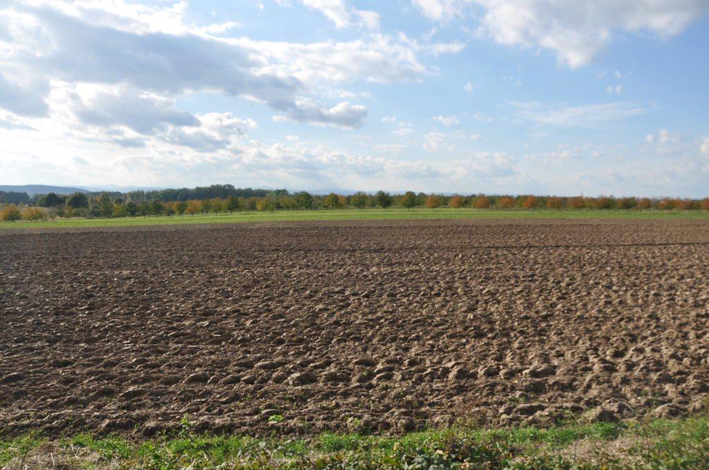 Działka rolna na sprzedaż Mysłaków  29500m2 Foto 9