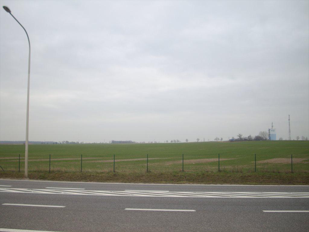 Działka inwestycyjna na sprzedaż Środa Śląska, Droga 94  400000m2 Foto 2